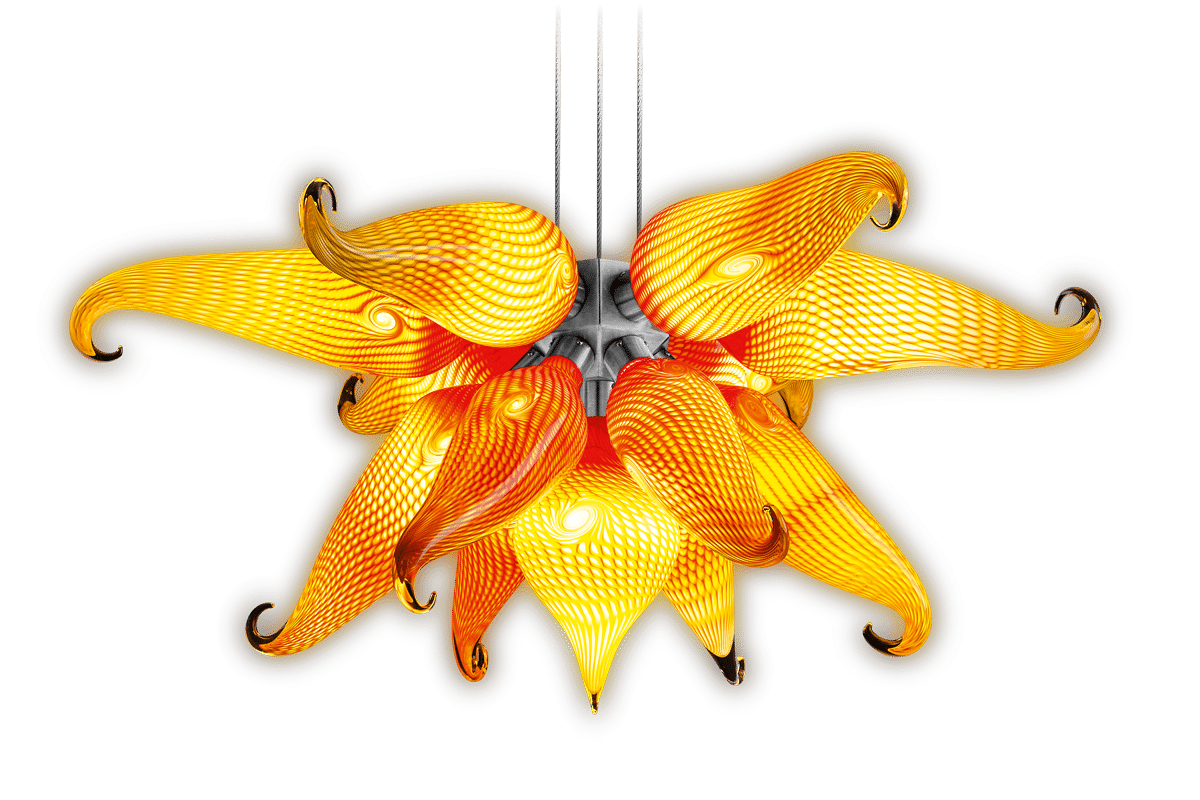phoenix_1200x800px